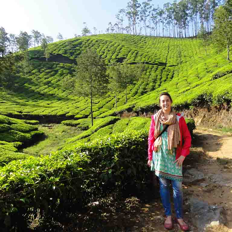 An IU student stands in a field of tea plants in India.