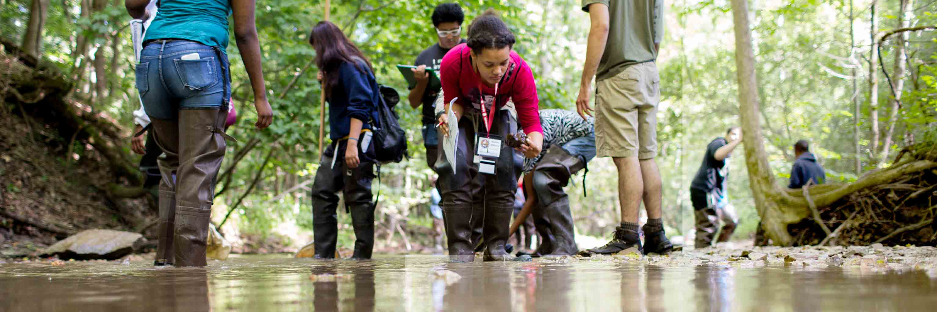 Students in wading boots work on a project in a stream.
