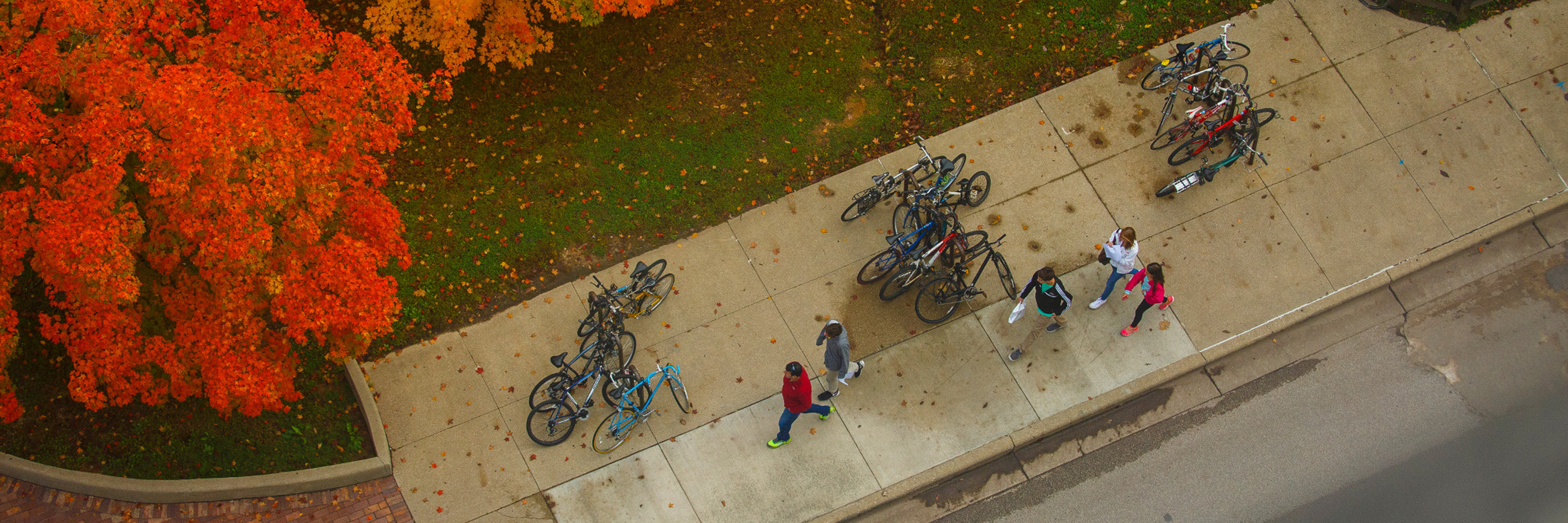 A line of bikes parked outside of Ballantine Hall.