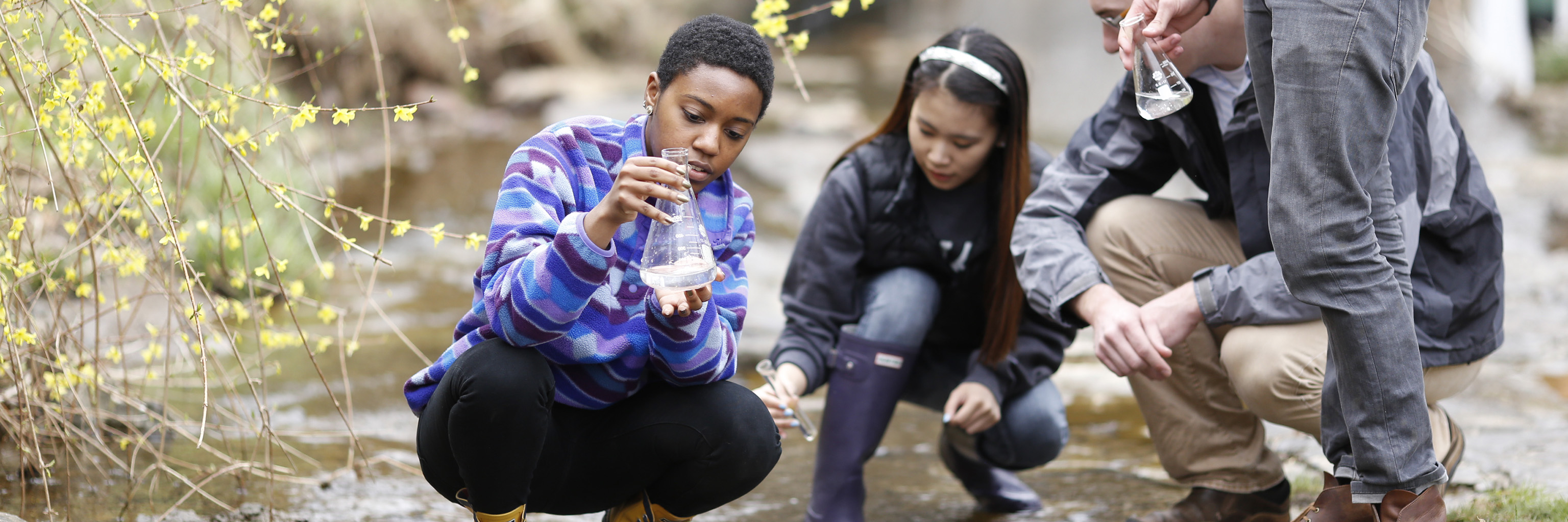 Students take water samples from a river.