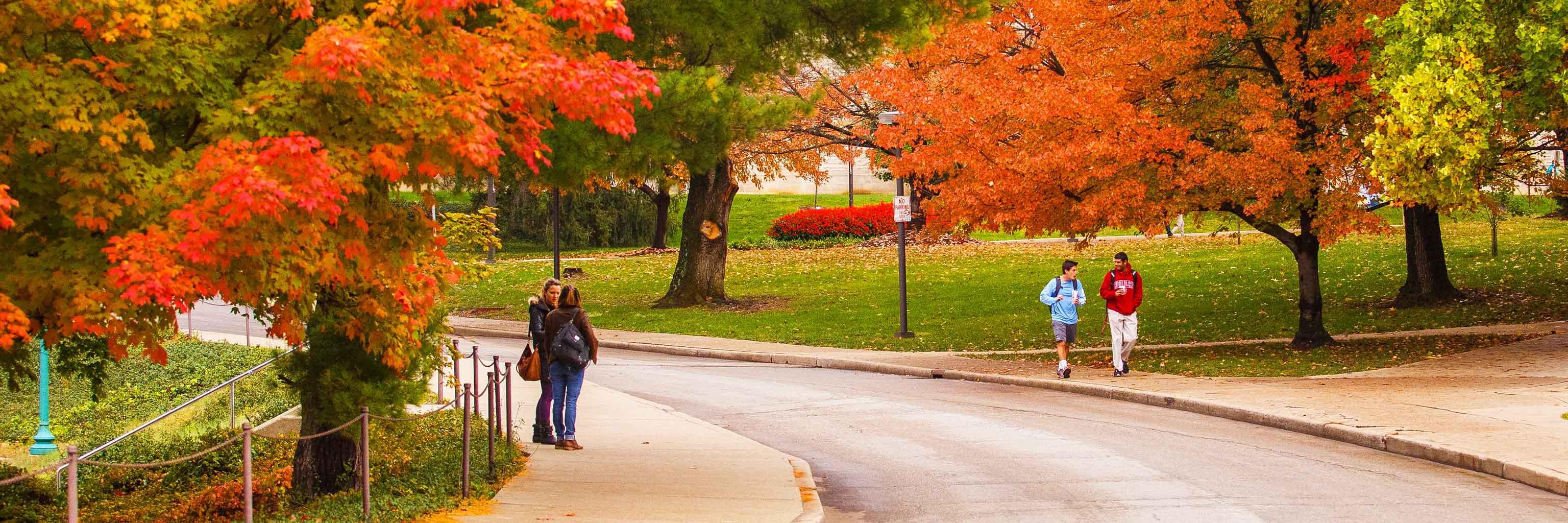 Students walk on campus on an autumn day.