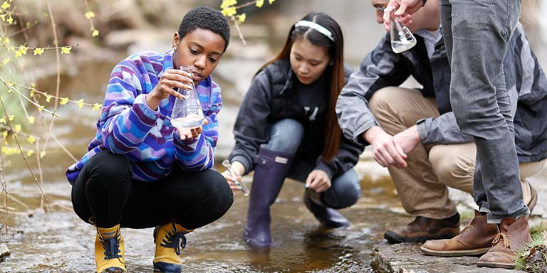 students taking water samples of a creek
